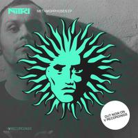 Nitri Metamorphoses EP